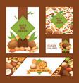 nut nutshell of hazelnut walnut and almond vector image