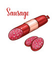 salami sausage with slice sketch of meat product vector image vector image