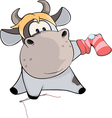 A cow sews a sock Cartoon vector image vector image
