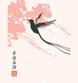 a flying hummingbird on a abstract background vector image vector image