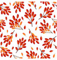 infinite pattern with barberry vector image vector image