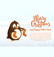 penguin with knitted socks christmas and new year vector image