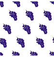 Purple burgundy and blue grape seamless pattern on vector image vector image