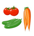 set of vegetables of tomatoes carrots and vector image