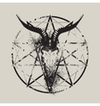 skull of goat and pentagram vector image vector image