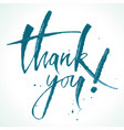 thank you lettering modern calligraphy vector image