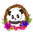 cute panda in root of tree frame with flower vector image vector image
