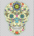hand drawn colorful skull vector image vector image