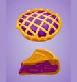 homemade organic bilberry pie dessert vector image vector image