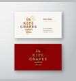 ripe grapes farm abstract elegant sign or vector image