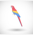 scarlet macaw bird flat icon vector image