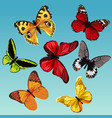 set of drawn colored butterflies on a blue vector image