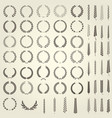 set of laurel wreaths and ears of wheat vector image