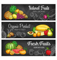 tropical fruit and berry chalkboard banners vector image vector image