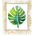 color leaf in a frame vector image vector image