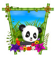 cute panda in bamboo frame with flower scene vector image