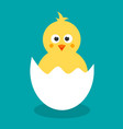 cute yellow cartoon chicken for easter design vector image vector image