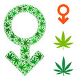 impotence symbol collage of weed leaves vector image