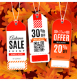 Set with sale labels Autumn sale event vector image vector image