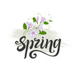 spring lettering decorative element convolvulus vector image