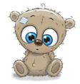 cute cartoon teddy bear vector image