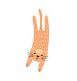 cute jumping cat in cartoon style feline vector image vector image