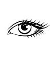 eye on white background woman eye vector image