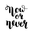 now or never calligraphic inspirational vector image