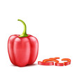 realistic red bell pepper