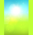 blurred summer landscape vector image
