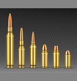 bullets different calibers stand in row ammo vector image
