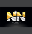 combination letter nn n n alphabet with gold vector image vector image
