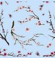 set of sakura japan cherry pattern vector image