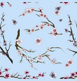 set sakura japan cherry pattern vector image