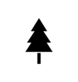 Tree Icon Flat vector image vector image