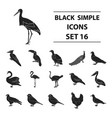bird set icons in black style big collection of vector image