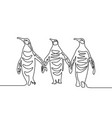 continuous line drawing three penguins group of vector image vector image
