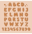 Cookie biscuit alphabet font vector image