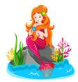 mermaid princess combing her hair vector image