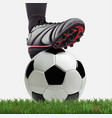 soccer ball with football player feet on grass vector image vector image