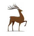 deer with horns decorative animal vector image vector image