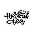 herbal tea linear calligraphy hand drawn vector image vector image