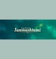 janmashtami festival peacock feather banner design vector image vector image
