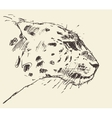 Leopard head style hand drawn sketch vector image