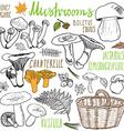 Mushrooms sketch doodles hand drawn set Different vector image vector image