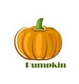 Orange pumpkin vegetable in cartoon style vector image