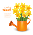 spring flowers with watering can vector image vector image