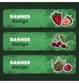 BerryBanners2 vector image