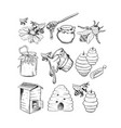 honey sketches set bee hive honey jar barrel vector image