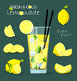 lemonade set lemon vector image vector image
